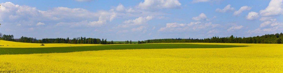 Zemědělské družstvo Čimelice